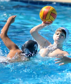 Clube Paulistano - Curso Polo aquático