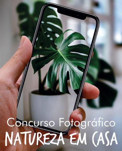 Concurso Fotográfico Natureza em Casa